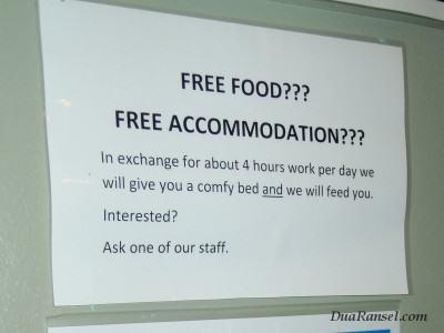 Iklan kerja buat backpacker di Milford Sound, Selandia Baru