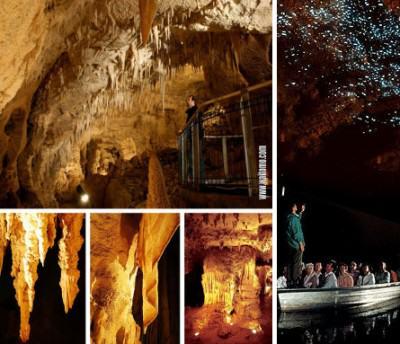 Waitomo glowworm caves di Selandia Baru