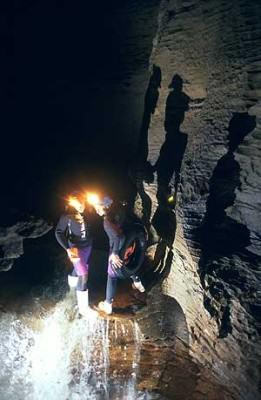Gua Waitomo: Melompat di air terjun