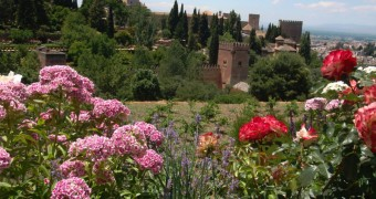 Flower garden in Alhambra, Granada, Spain