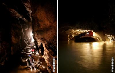 Gua Waitomo: Menyusuri gua, tubing di bawah langit-langit rendah