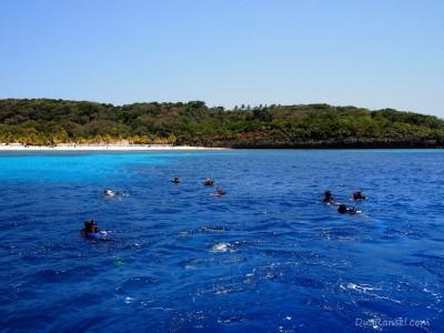 Scuba diving at West Bay, Roatan Island, Honduras
