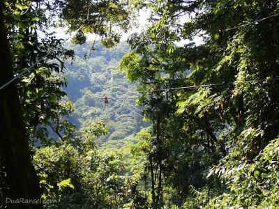 Zip-line gaya Superman - Tur zip-line kanopi, hutan hujan-pegunungan Monteverde, Kosta Rika