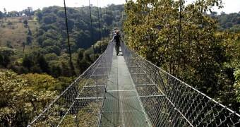 Jembatan Tarzan Swing - Tur zip-line kanopi, hutan hujan-pegunungan Monteverde, Kosta Rika