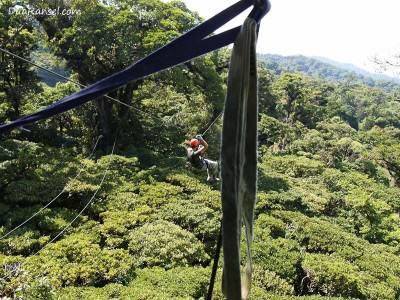 Zip-line - Tur zip-line kanopi, hutan hujan-pegunungan Monteverde, Kosta Rika