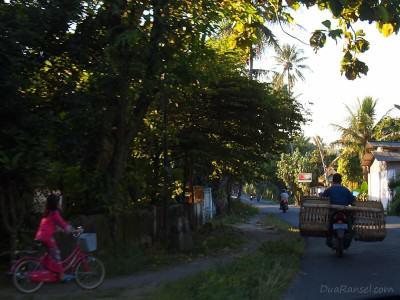 Pulang Kampung Dadakan