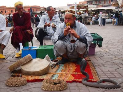 Pawang ular di Jemaa el-Fna, Marrakesh, Maroko