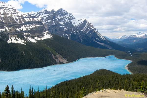 Peyto glacier-fed lake, Banff National Park, Alberta, Canada - Canadian Rockies