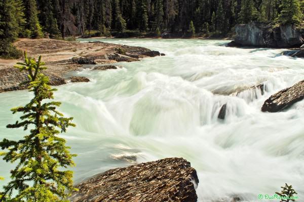 Natural Bridge rapid, Yoho National Park, British Columbia, Canada