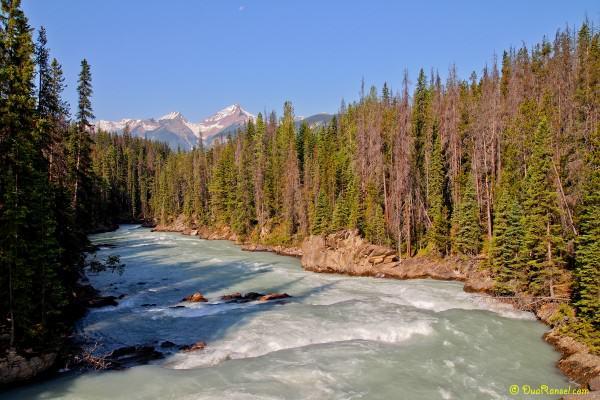 Kicking Horse River, Yoho National Park, British Columbia, Canada