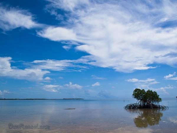 Honda Bay | Palawan Island