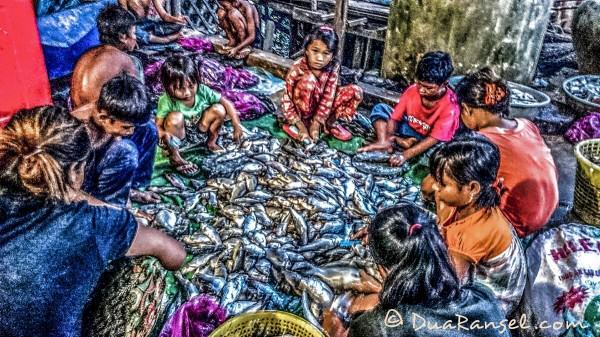 Menyisik ikan | Kampong Khleang | Xperia Z1