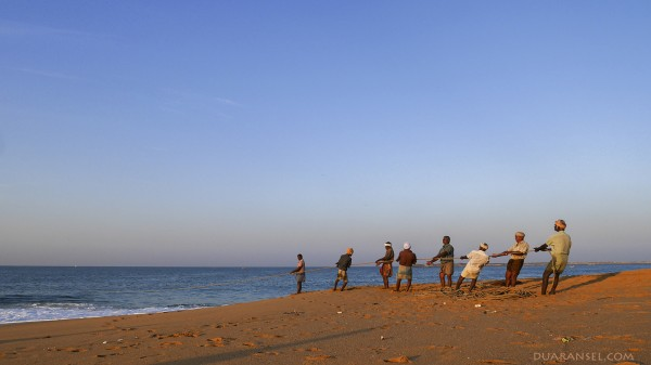 A row of fishermen pulling fishing net at Quilon Beach