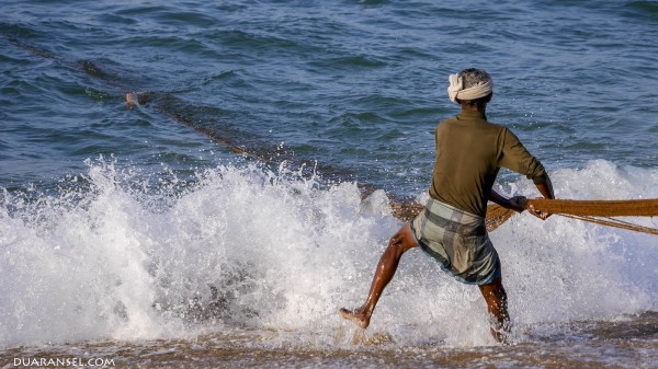 Fisherman in lungi pulling fishing net from the ocean. Quilon Beach, India